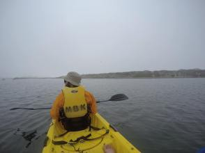 Kayaking with Otters!