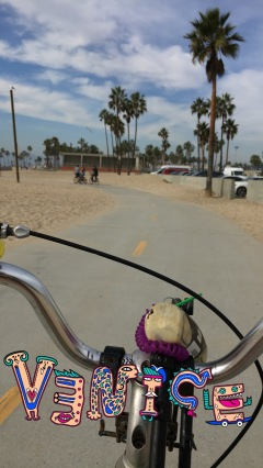Riding along Venice Beach. US beaches are lame tbh